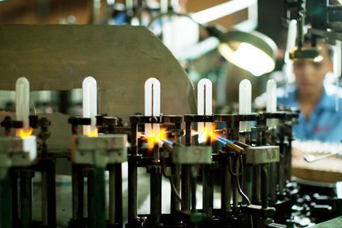 Đèn Compact 10.000h - Giải pháp tiết kiệm năng lượng hiệu quả