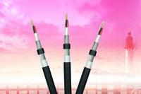 Cáp điện lực hạ thế 1- 4 lõi, lõi, ruột đồng, cách điện PVC , vỏ PVC,giáp bảo vệ 1 lớp kim loại CVV/WA