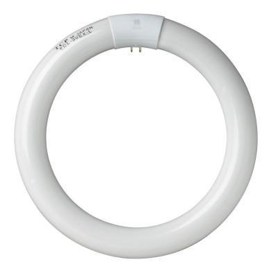 Bóng huỳnh quang vòng LEKISE Circline T9 FCL32/T9/865